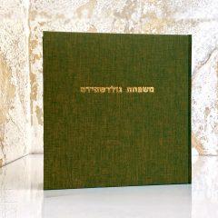 אלבום משפחתי של משפחת גולדשמידט